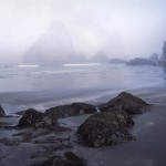 Dawn, Fog, Trinidad Beach, California