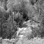 Little Blitzen River, Steens Mountain