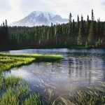 Meadow and Lake, Mt Rainier