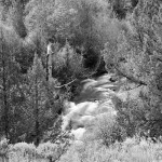 Little Blitzen River, Steens Mountain