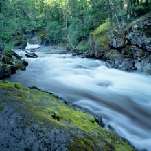Rapid River, Wild Sky Wilderness, WA
