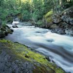 Rapid River, Wild Sky Wilderness